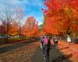 Fall Bike Ride